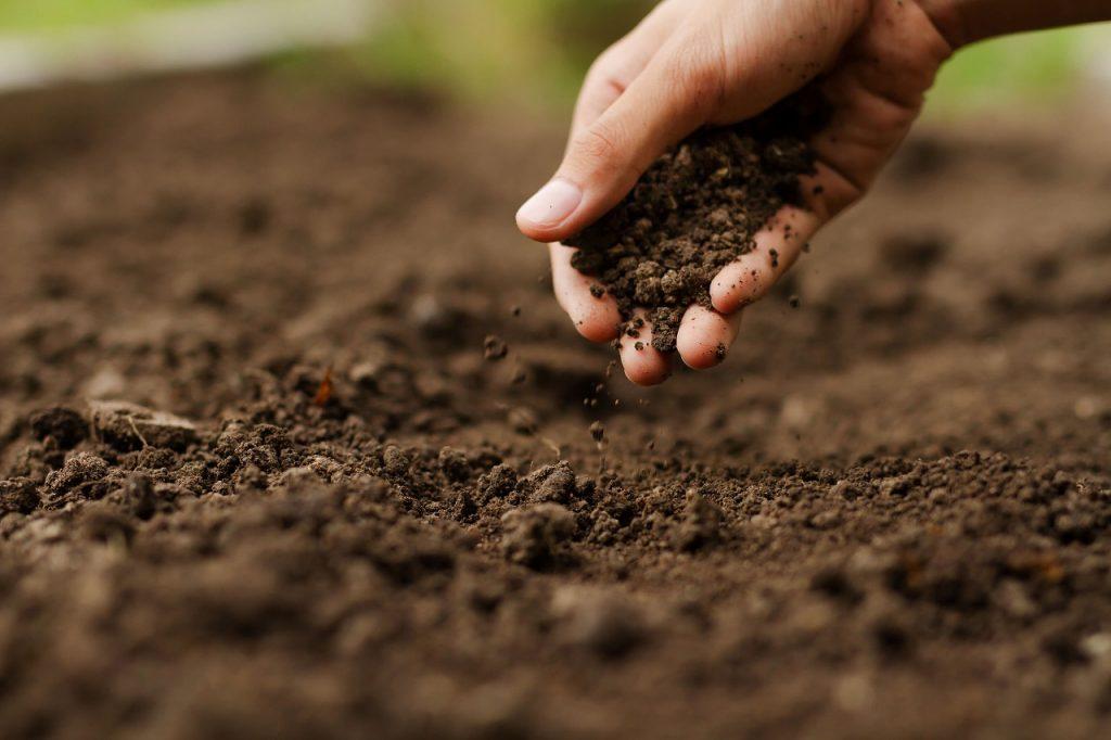 土を耕す人の手